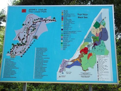 batum botanik parki harita
