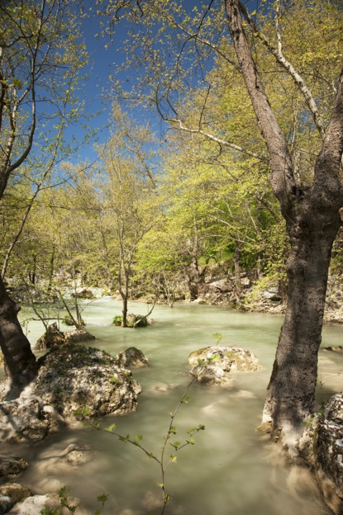 kirpe kanyonu