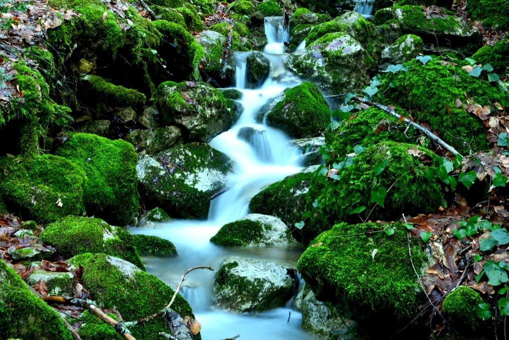 Doğa Yenicedir -2 | Sırtçantam Gezi ve Kültür Dergisi